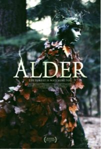 Alder<p>(United Kingdom)