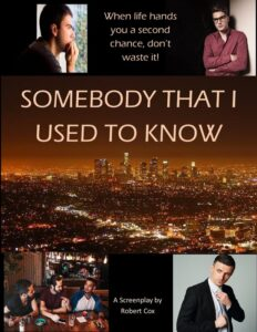 Somebody That I Used to Know<p>(United States)